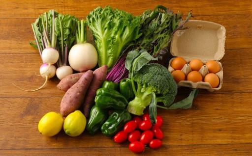 【定期便10回】もじょか 野菜 と 平飼い 卵