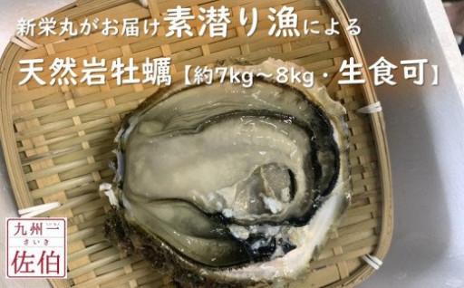 素潜り漁による「天然岩牡蠣」【生食可】