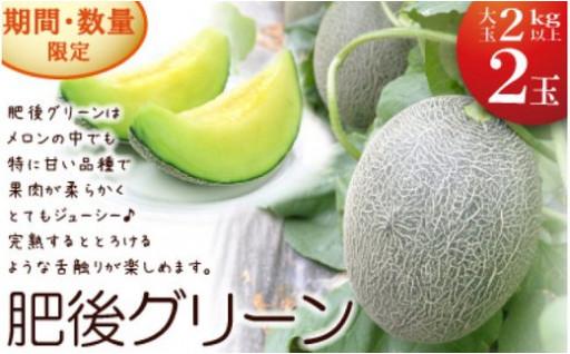 【締切間近】肥後グリーンメロン 大玉限定!