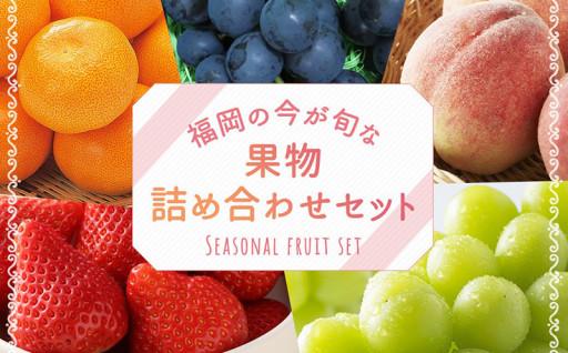 福岡の旬の果物詰め合わせセット
