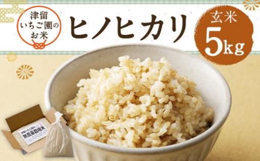【玄米】ヒノヒカリ 5kg 農薬・化学肥料不使用