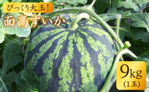 【先行予約☆びっくり大玉】面高すいか9kg×1玉