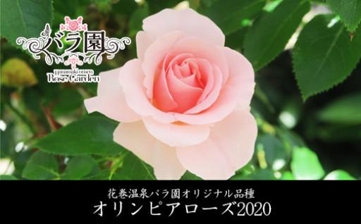 バラ好き必見!花巻温泉バラ園のオリジナル品種苗木