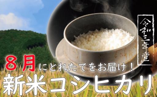 8月からお届け★新米★コシヒカリ&よさ恋美人