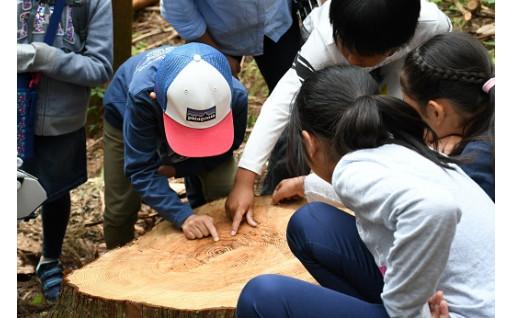 丹波山村で、森林を知り林業を体験しませんか。