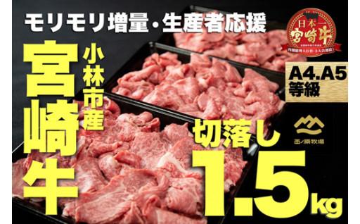 【限定】A4等級以上の宮崎牛が驚異のモリモリ!!
