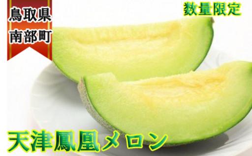 【残りわずか】鳥取タカミメロン・ペルル
