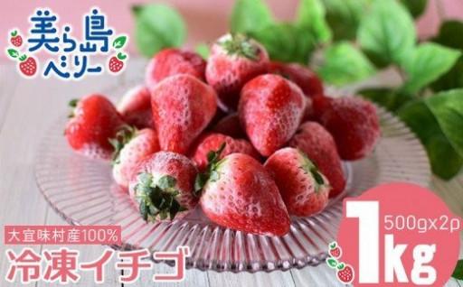 美ら島ベリー【沖縄県大宜味村産100%】1kg