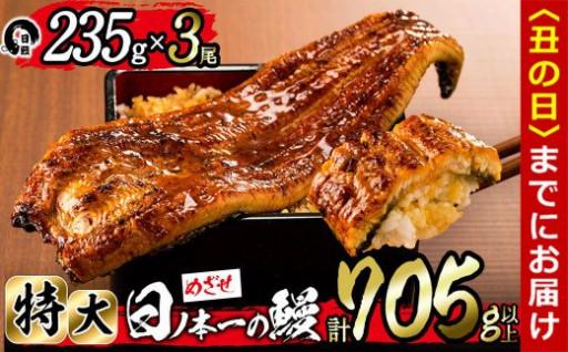 日ノ本一の鰻の蒲焼き<特大>3尾セット
