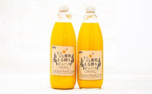 熊本市産 みかんジュース 1L×2本 100%