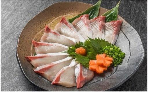 (刺身用)佐伯産カボスぶり 低温熟成魚切り身