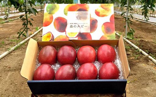 【予約受付中】情熱の果実「森のルビー」