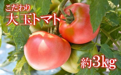 八幡平市産こだわり大玉トマト 【リンカ】3kg