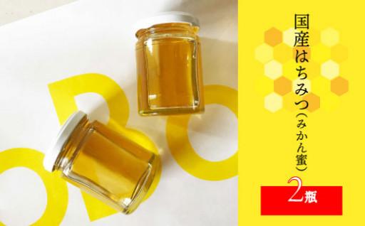 【今年の新はちみつ出来ました】佐川町産純粋蜂蜜