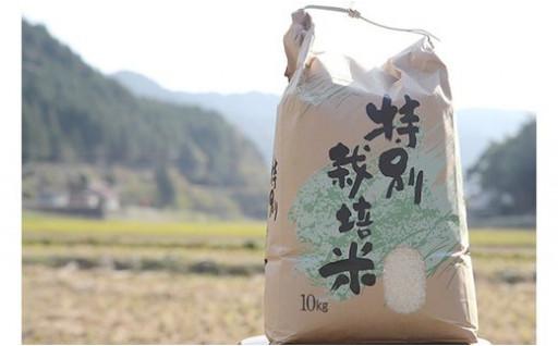 美和町産「ヒノヒカリ」(7kg)【福本農園】