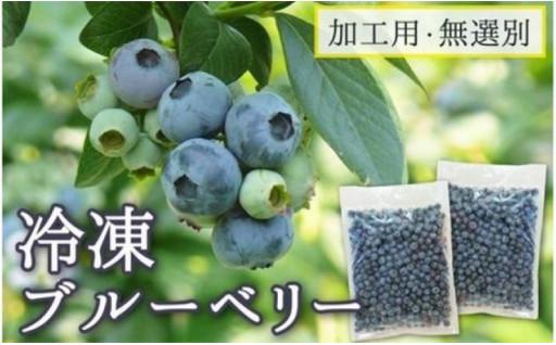 【登米市産】冷凍ブルーベリー(加工用・無選別)