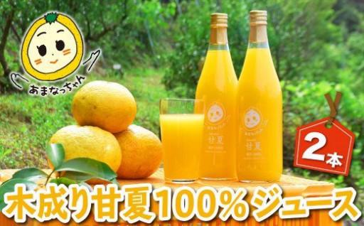 みかん畑再生プロジェクト 甘夏100%ジュース