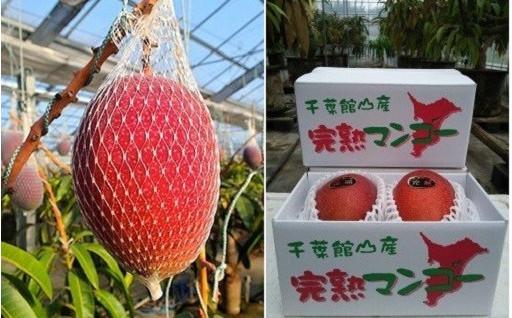 この時季限定!!【館山産まぼろしの完熟マンゴー】