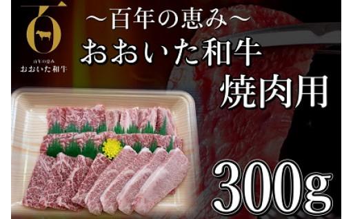 おおいた和牛焼肉300g