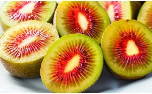 新種のキウイフルーツ(レインボーレッド)