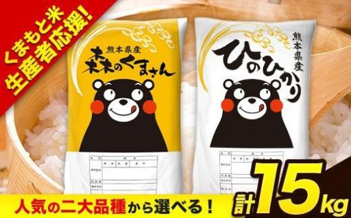 《期間限定》選べる熊本のお米★たっぷり15kg!