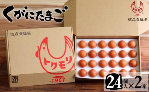 くがにたまご【24個入り×2箱】