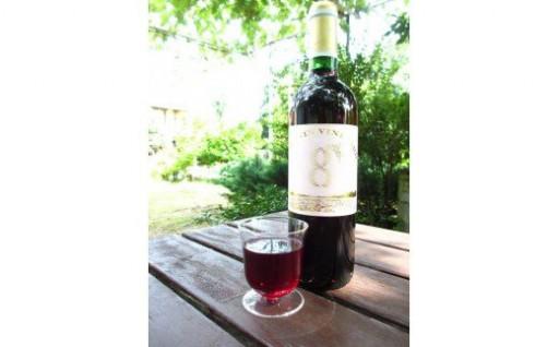 八街産ぶどう100%のフレッシュな赤ワイン