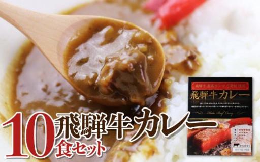最高ランク5等級の飛騨牛カレー10食セット