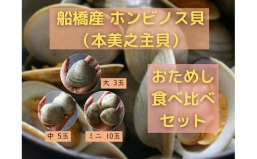 【新規開始】船橋産ホンビノス貝 食べ比べセット