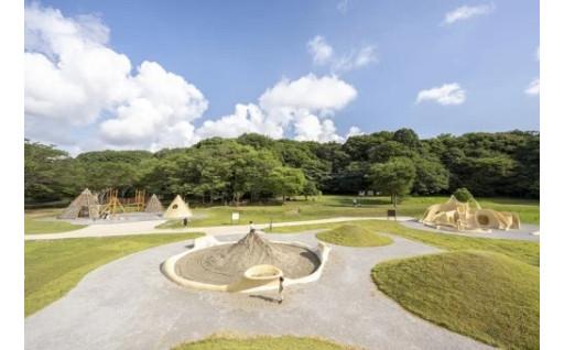 第2弾!GCF®21世紀の森と広場に遊び空間を!