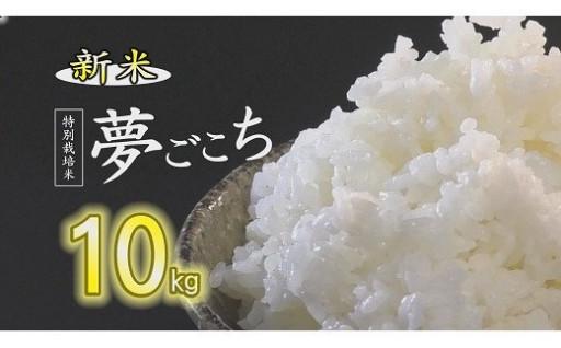 (新米)夢ごこち(特別栽培米)10kg