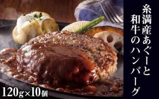 糸満産あぐーと和牛のハンバーグ