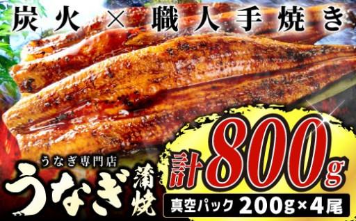 800g! うなぎの蒲焼4尾【中国産】