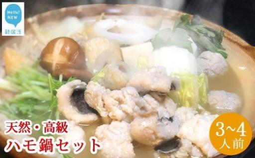 せとぴち!オリジナル天然ハモ鍋セット3~4人前
