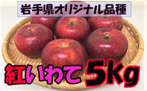 八幡平市産 仁さんのりんご『紅いわて』/5㎏