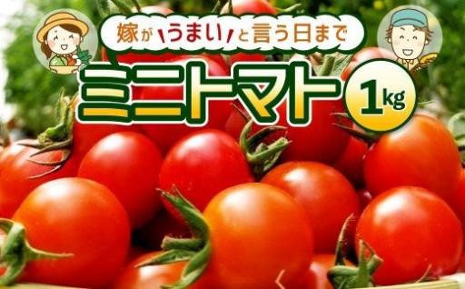 美味しいトマト作りをするべく毎日精進しております