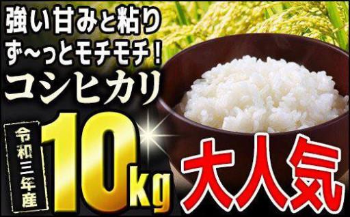 モチモチ食感っ令和3年産【コシヒカリ】10kg