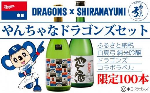 中日ドラゴンズラベルの日本酒セット