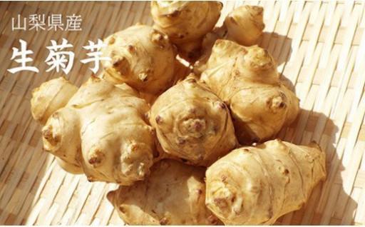 生菊芋 2キロ