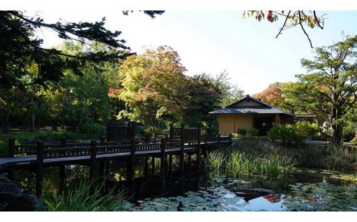 秋の玉泉館跡地公園で紅葉と風情を愉しむ