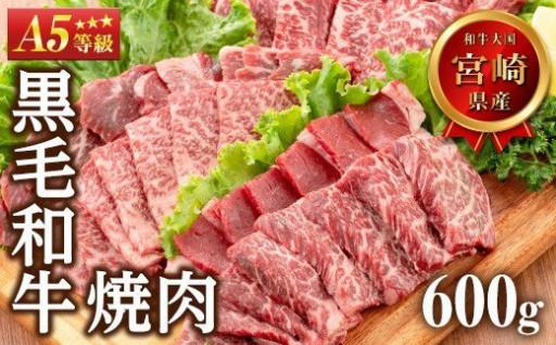 A5等級宮崎県産黒毛和牛焼肉 計600g