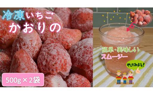 冷凍いちごのご紹介(品種:かおりの)