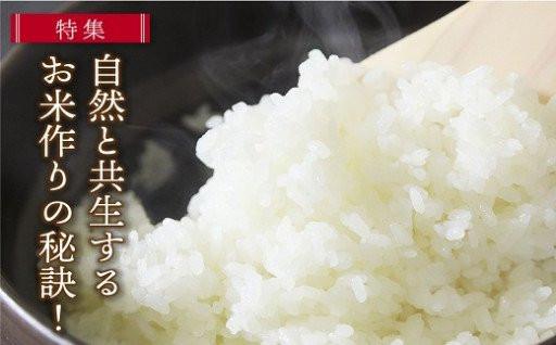 【定期便も充実!】毎年大好評の朝来市産のお米!