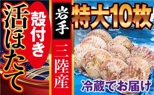 朝獲れ三陸活ホタテセット (特大 10枚入)