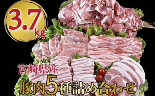 宮崎県産豚肉5種セット 合計 3.7kg 小分け