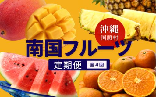 【12月まで】南国沖縄のトロピカルフルーツ定期便