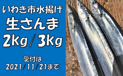 ★生さんま2kg/3kg★