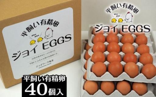 奄美大島の平飼い有精卵 40個入り