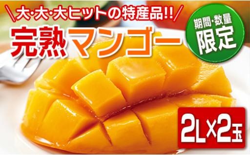 人気の日南産完熟マンゴーが先行予約絶賛受付中!