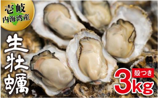 【予約受付中】大人気!殻つき生牡蠣3kg!!